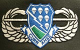 (14) Air Assault Wings