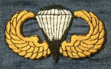 (45) Parachute Badge